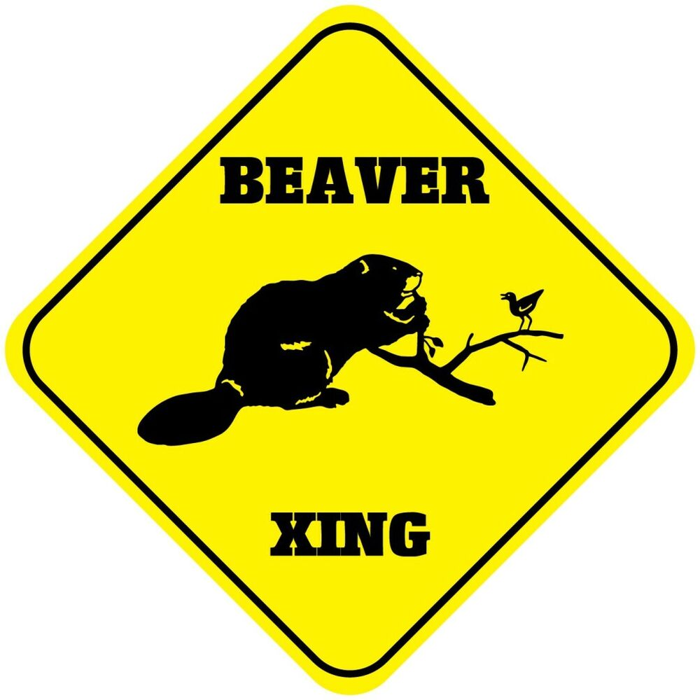 beaver crossing guys Going above your liability insurancesneeds at liability insurance guys, we're there to meet your goals when it comes to liability insurance in beaver crossing, ne.