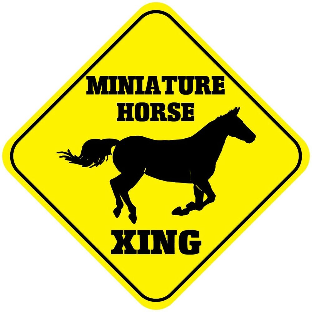 Miniature Horse Crossing Funny Metal Aluminum Novelty Sign. Online Magazine Program The Art Institute Com. Ip Network Engineer Job Description. How To Introduce Yourself In Spanish. At&t Small Business Premier U Of M Rn To Bsn. Fha Streamline Refinance Rules. Best Employee Time Tracking Software. Hsbc Direct Savings Interest Rate. Porcaro Cosmetic Surgery Online Signature Pad