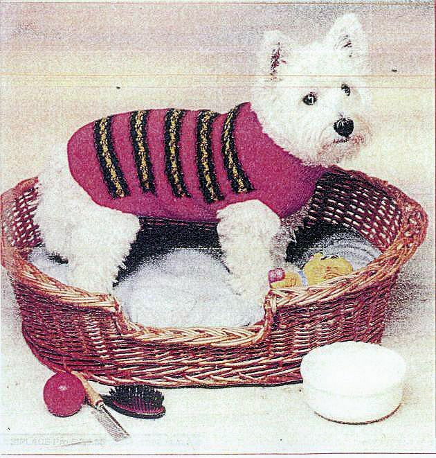 Dog Coat Knitting Pattern Uk : Dk leg dog coat knitting pattern ebay
