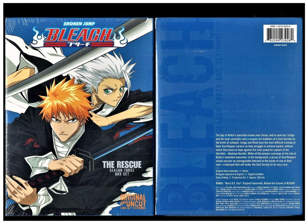 bleach season 10 english dubbed