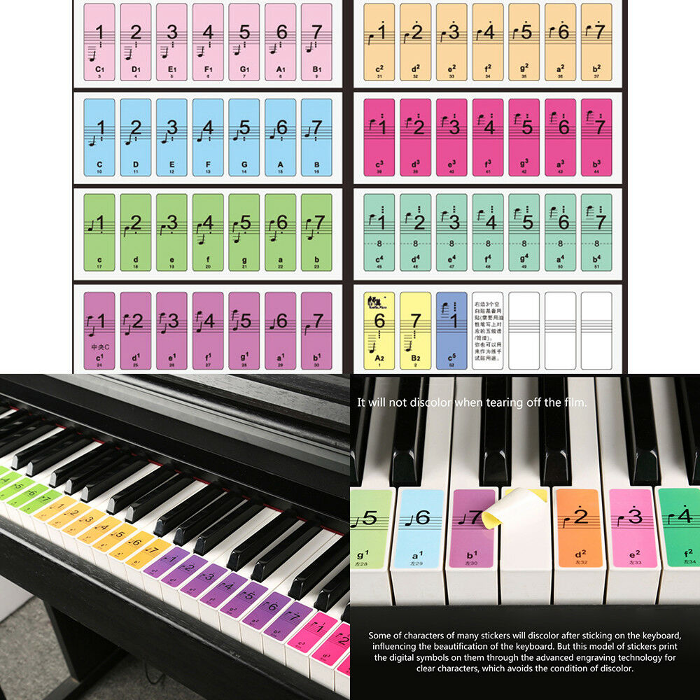88 Color Piano Keys Note Keyboard Sound Name Stickers Label Decal