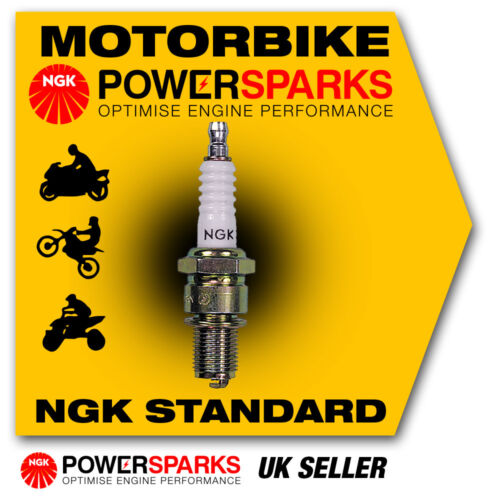 NGK Spark Plug fits GENERIC Cracker 50 50cc 07-> [BR7ES] 5122 New in Box!