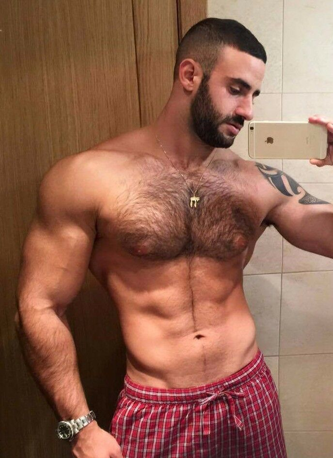 Hairy studs in gay sex xtube