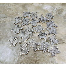Set of 20 Pewter State of Texas Charms - 1008