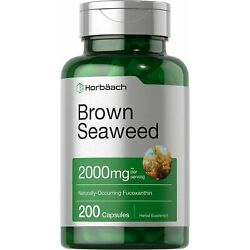 Brown Seaweed Capsules 2000mg | 200 Count | Fucoxanthin Supplement | by Horbaach