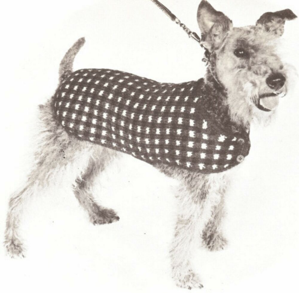 Knitting Coats For Dogs : Vintage knitting pattern dog coat sweater blanket s m l ebay