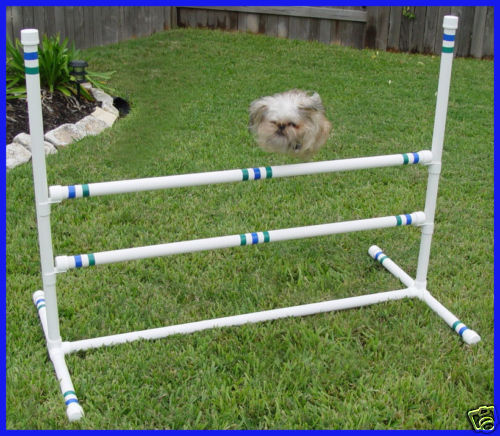 3 Double Crossbar Single Jumps Dog Agility Equipment Ebay