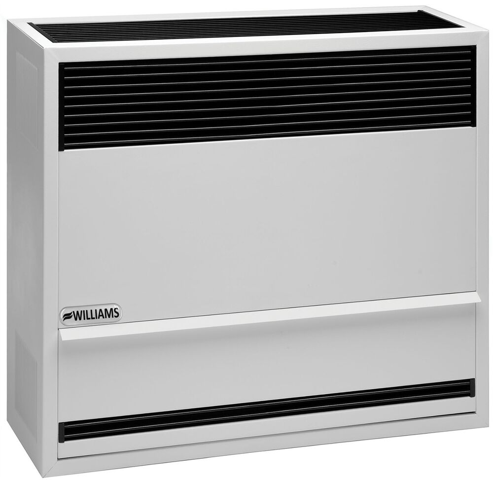Williams 3003821 30 000 Btu Direct Vent Wall Furnace