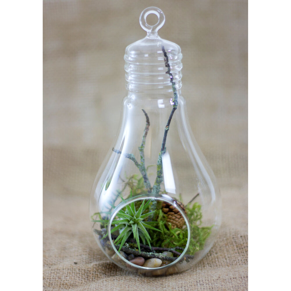 6. Light bulb planter with stand. Image: Kosmu. What caught our eye about this light bulb planter (another from Rodrigo Nassinger; see entry 9) is the cool stand made from a piece of old copper wire. Simply twist it with a bit of skill and voilà, there's a stylish holder for your light bulb plant .
