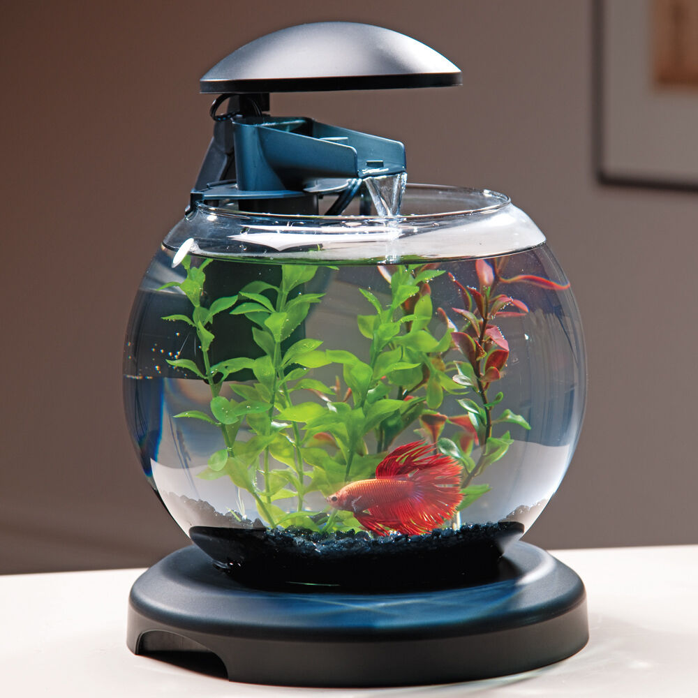 Tetra waterfall globe aquarium ebay for Tetra fish tanks