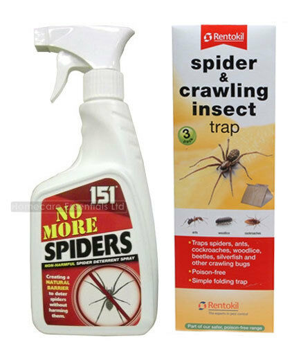 Spider repellent kit includes no more spiders spray for How to stop spiders entering your house