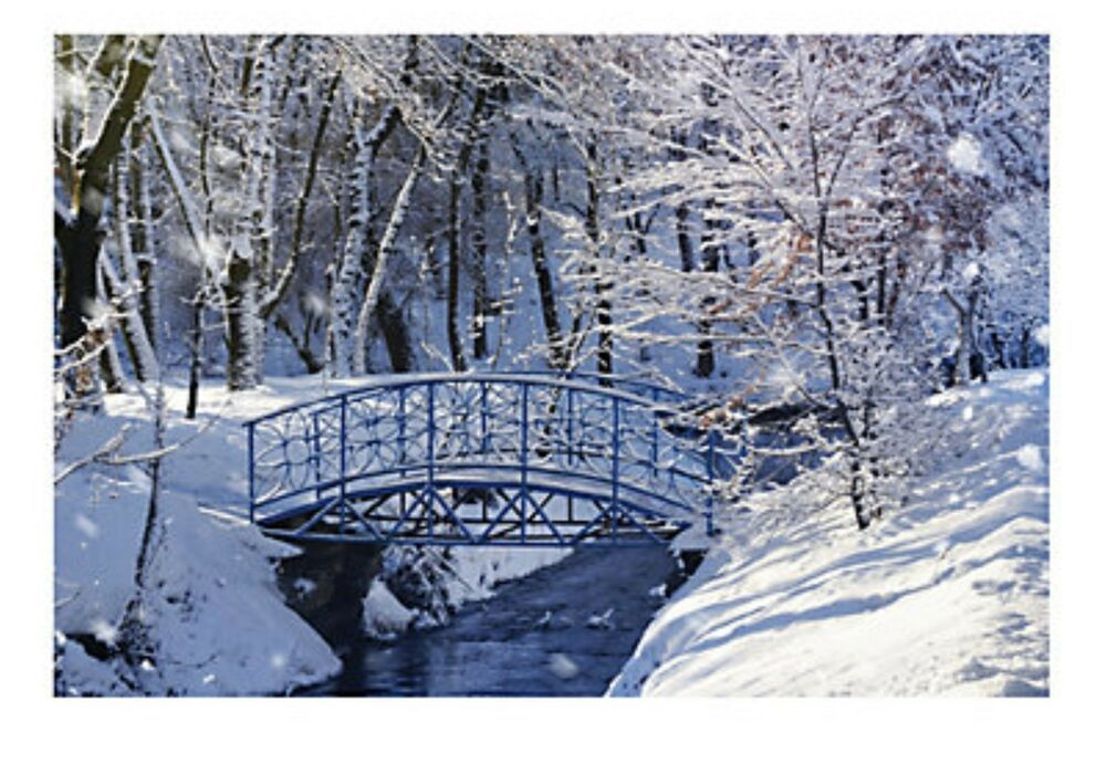 9ft winter wonderland snow frozen bridge wall mural scene for Winter wall murals