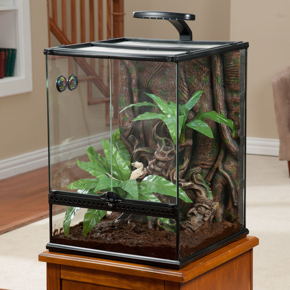 exo terra large crested gecko habitat kit ebay. Black Bedroom Furniture Sets. Home Design Ideas