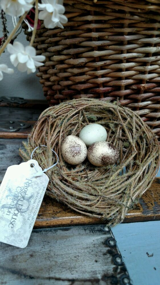 Nwt ragon 5 rustic 3 bird eggs in nest twig vine moss for The nest home decor