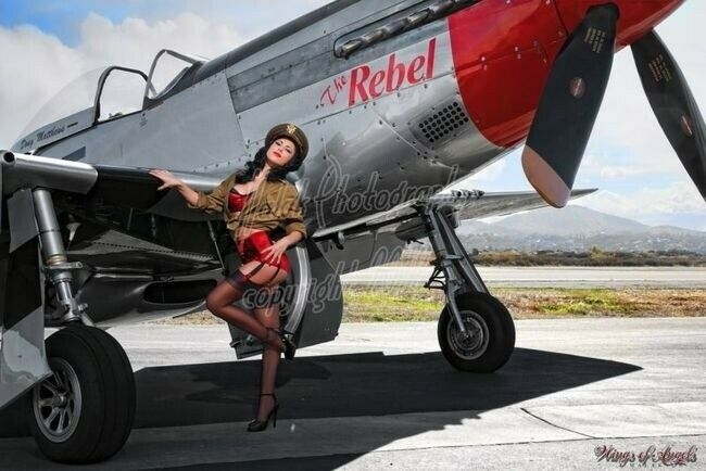 wings of angels malak pin up jen rox the rebel v wwii p 51d mustang ebay. Black Bedroom Furniture Sets. Home Design Ideas