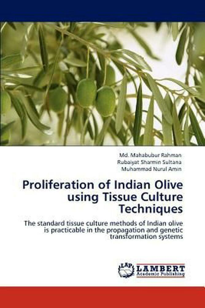 Proliferation of Indian Olive Using Tissue Culture Techniques: The ...