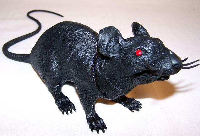Giant Size Black Rubber 17 In Rat Fake Mouse Play Rats