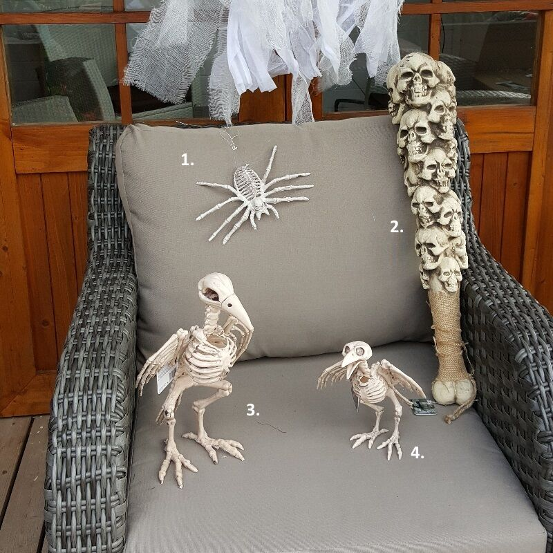 halloween deko figur vogel skelett spinnen skelett. Black Bedroom Furniture Sets. Home Design Ideas