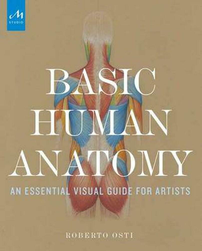 Basic Human Anatomy: An Essential Visual Guide for Artists by ...