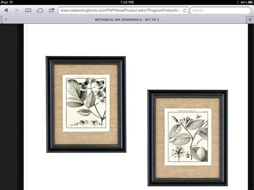 Botanical Black Framed Art Pair New In Box Vintage Home