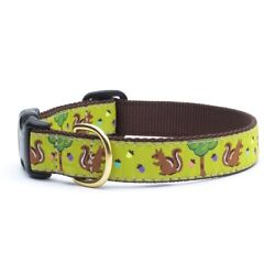 Up Country - Dog Design Collar -Made In USA - Nuts & Squirrels - XS S M L XL XXL