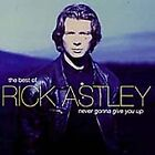 Rick Astley - The Best Of Rick Astley Never Gonna Give You Up CD (2003)