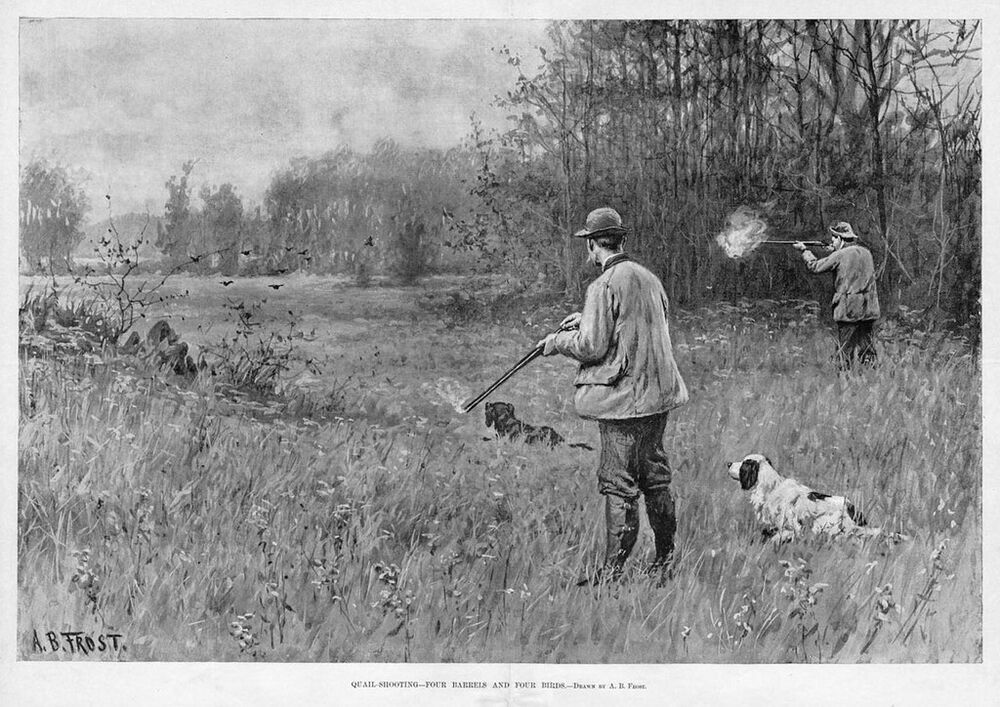 Quail Hunting Four Barrels Four Birds By A B Frost