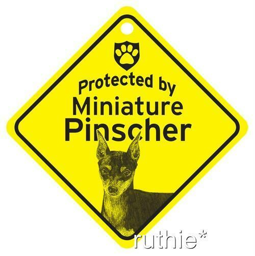 Protected by Miniature Pinscher Window Sign Made in USA  eBay
