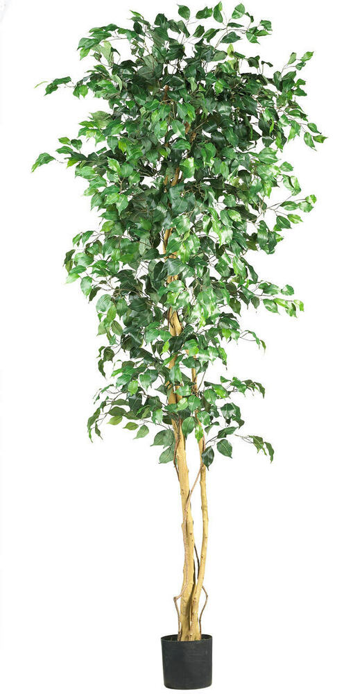 new large 7 39 silk full ficus tree artificial indoor high quality decor ebay. Black Bedroom Furniture Sets. Home Design Ideas