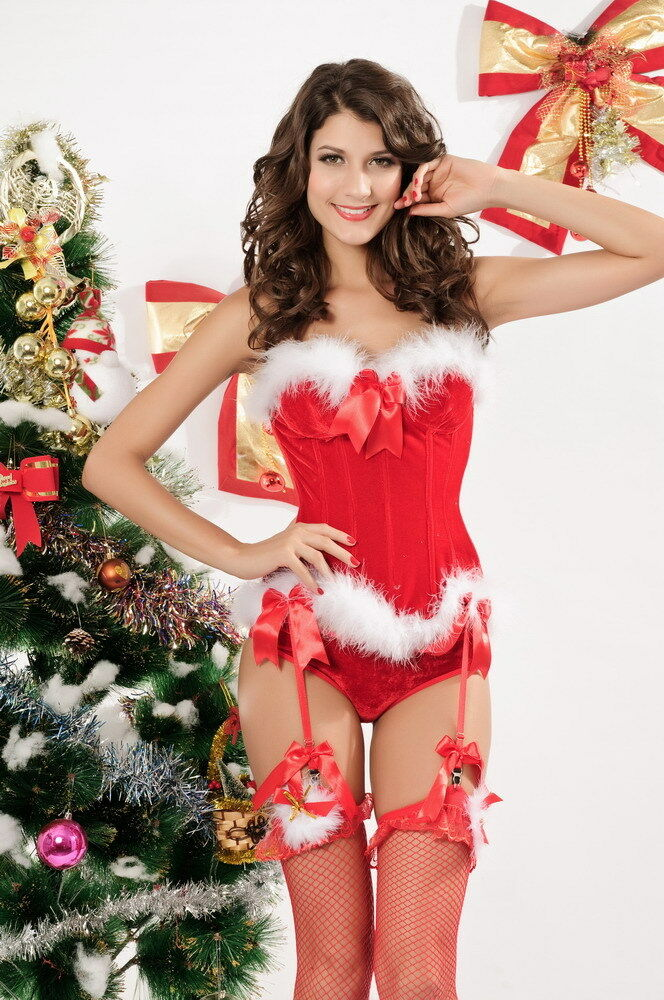women costumes Lingerie christmas for