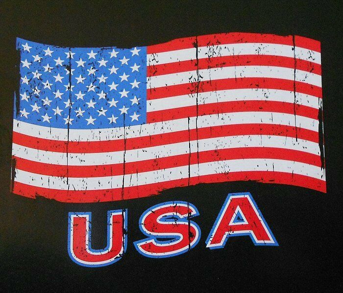 3panel american usa united states of america flag canvas usa united states of america american patriotic 308