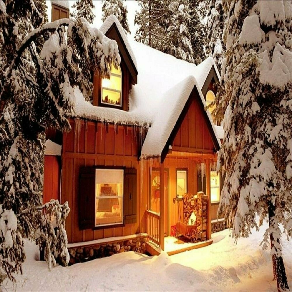 Cozy Home Interiors: Cozy Cabin Fragrance Oil Soap And Candle Making Supplies