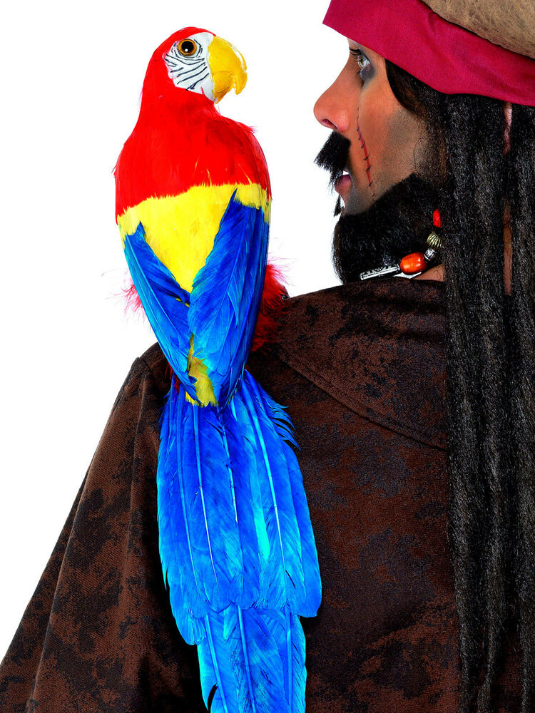 "20"" PIRATE PARROT ON SHOULDER MACAW BIRD SKULLY PIRATE"