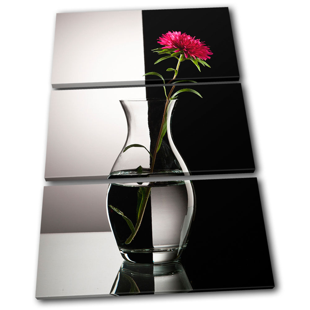 Black And White Floral Wall Decor : Flower in vase black white floral treble canvas wall art