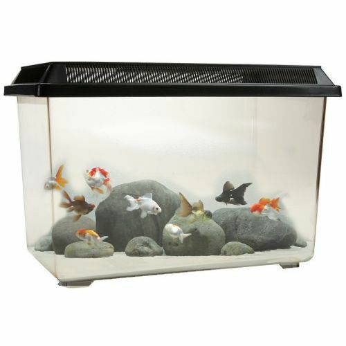 Pt068 goldfish 12l fish tank tropical aquarium breeding for Fish tank for goldfish