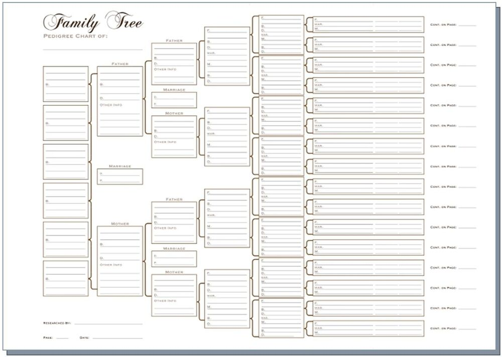 A3 six generation family tree chart pedigree pack of 3 for Five generation pedigree chart template