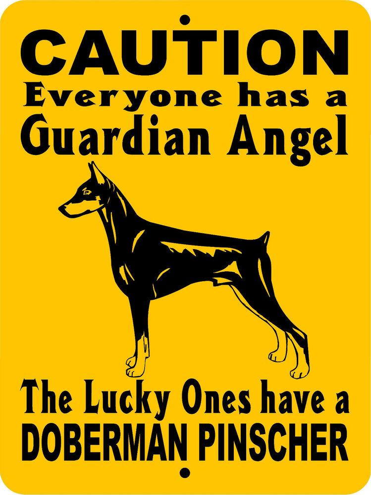 Doberman Guard Dog Signs. Medical Insurance In India For Senior Citizens. Septic Systems Cleaning Pain Killer Addiction. English Speaking Course In Delhi. Lowes Sliding Glass Door Installation Cost. Tutoring Learning Centers Home Security Utah. Spanish Language Culture What Causes Whiplash. Verizon Customer Service 800 Number Billing. Nc Workers Compensation Rules