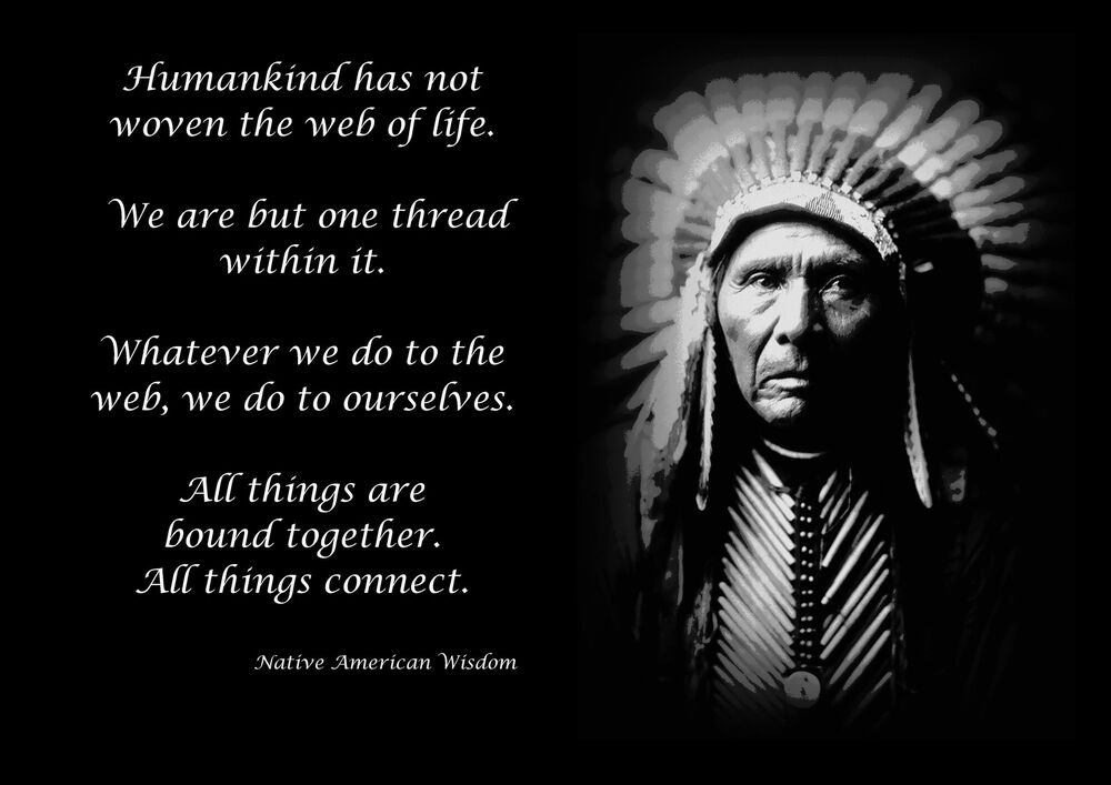 NATIVE AMERICAN INDIAN WISDOM QUOTE MOTIVATIONAL POSTER / PRINT / PICTURE |  EBay