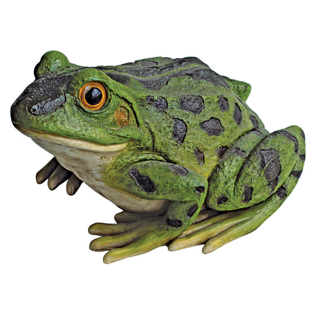 Stsatuette For Outdoor Ponds: Jeremiah The Bullfrog Sculpture Garden Pond Frog Pool