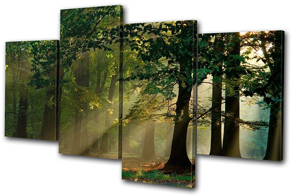 Landscapes Forest MULTI CANVAS WALL ART Picture Print VA ...