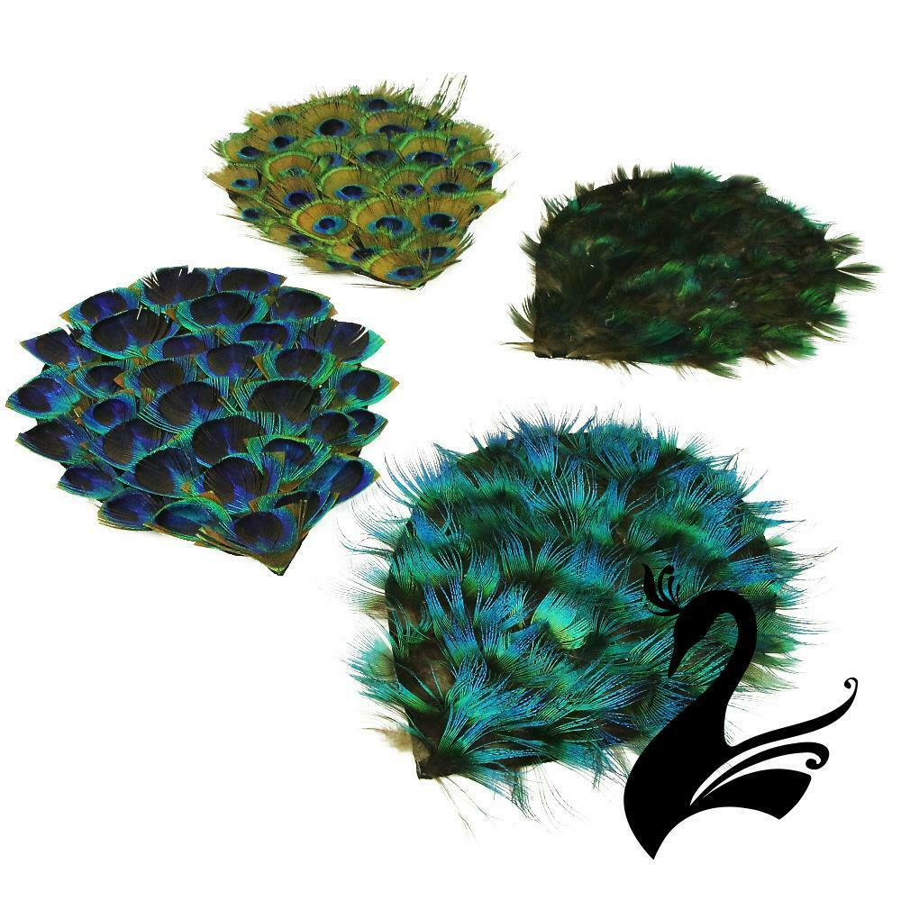 Feather peacock pad craft millinery fly fishing ebay for Where to buy craft feathers