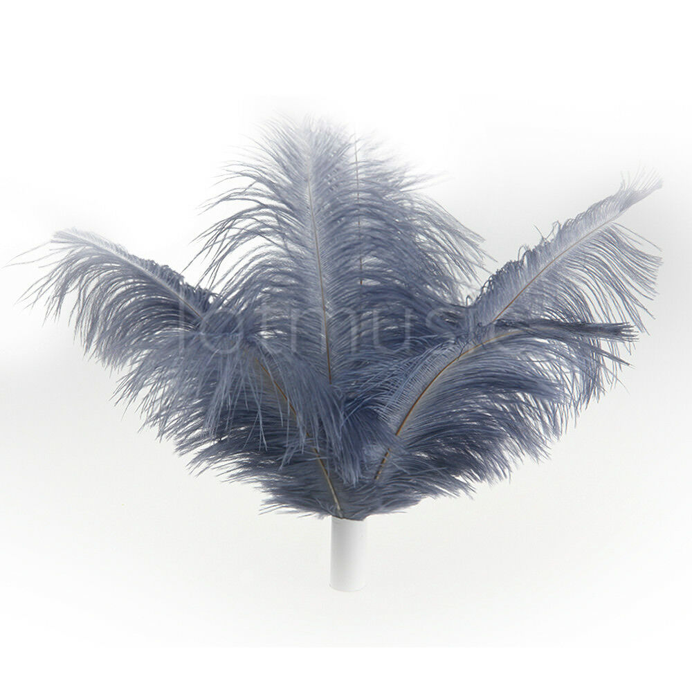 Real Ostrich Feathers