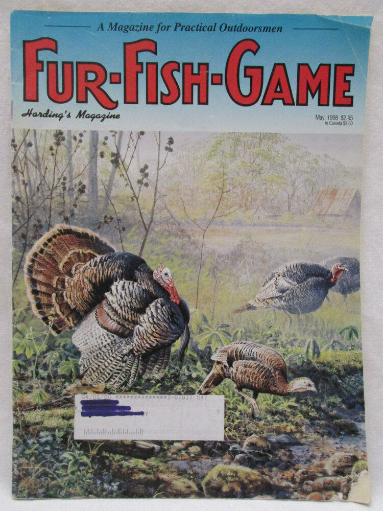 Fur fish game magazine may 1998 rocky mountain bobcat for Fur fish and game