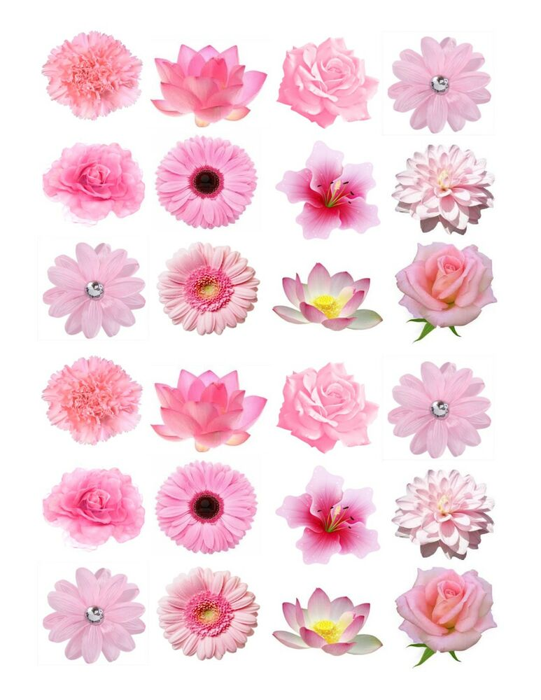 Cake Decorations Flowers Uk : 24 icing fairy cake toppers decorations edible Mixed light ...
