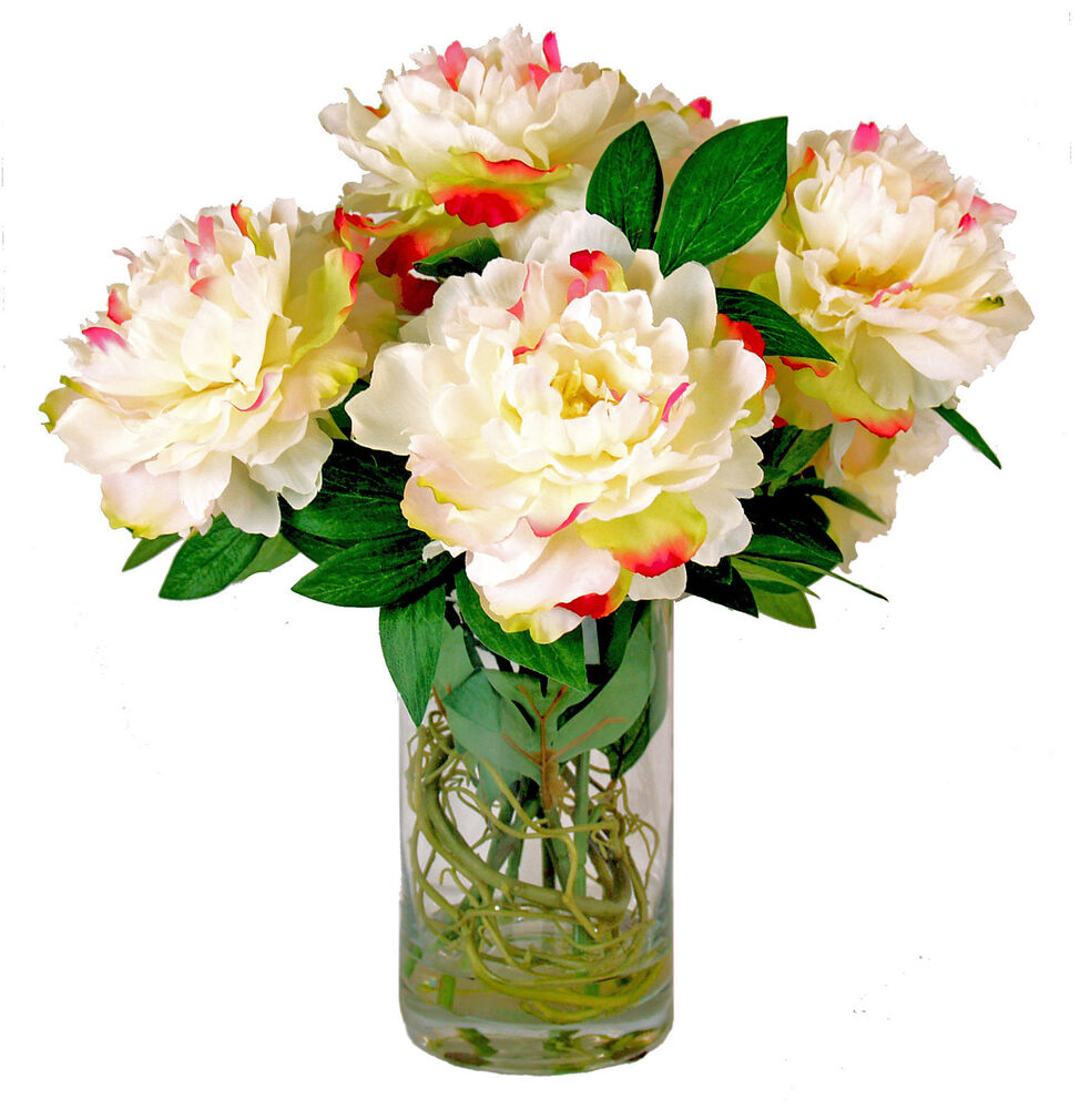 Peony Arrangements: PINK TIPPED PEONY BOUQUET