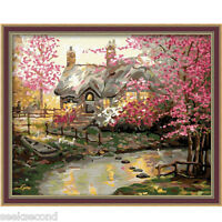 Acrylic Painting by Number Set 50x40cm (20x16'') House in the Dream JC7017