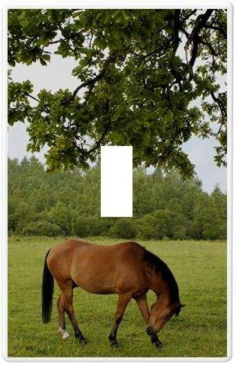 Horse In Pasture Wallplate Wall Plate Decorative Light