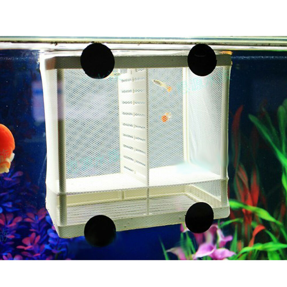 Aquarium fish tank breeding breeder baby fry newborn net for Fish tank net