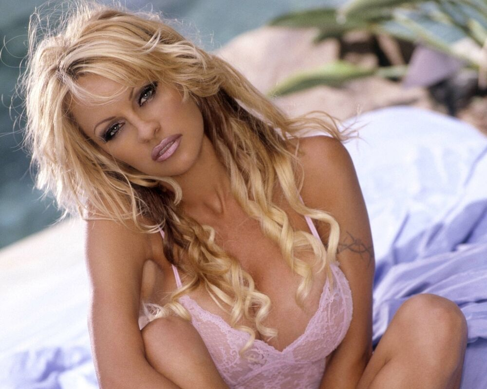 sexy hot pamela anderson 8 x 10 glossy photo picture image 7 ebay. Black Bedroom Furniture Sets. Home Design Ideas