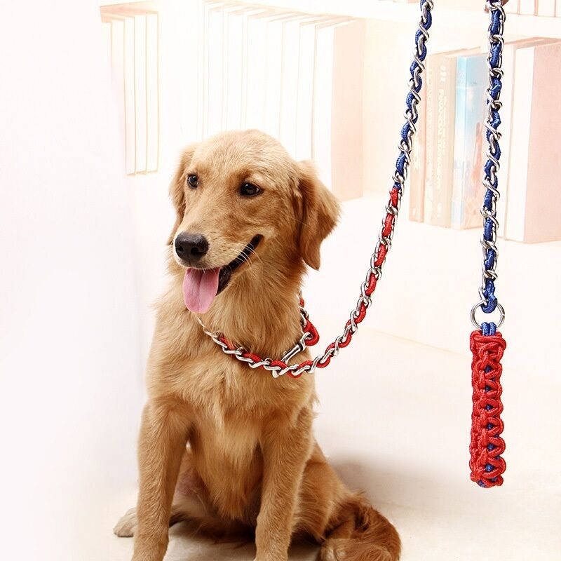 hot pet dog strong traction rope long anti bite dog chain harness leash collars ebay. Black Bedroom Furniture Sets. Home Design Ideas